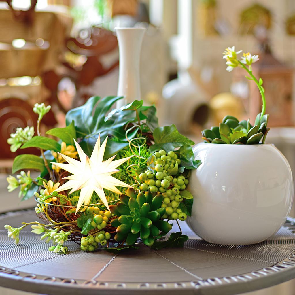 liten julstjärna vit på dekarationsfat med grön blomma