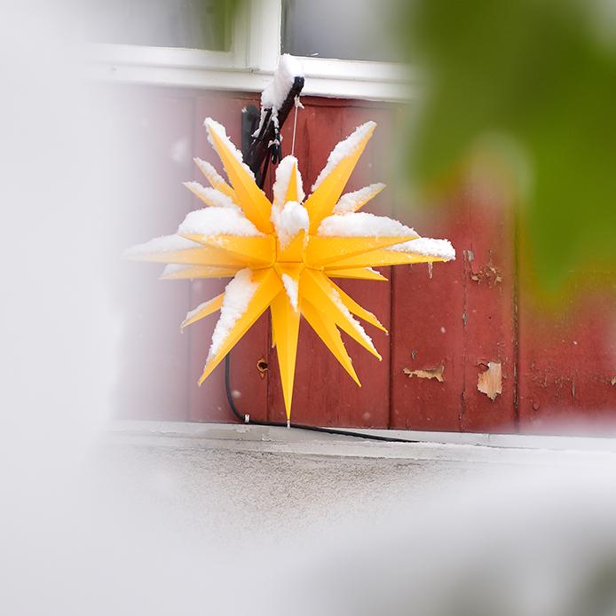 julstjärna utomhus gul image