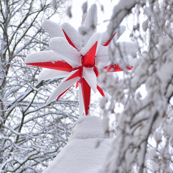 julstjärna utomhus röd image