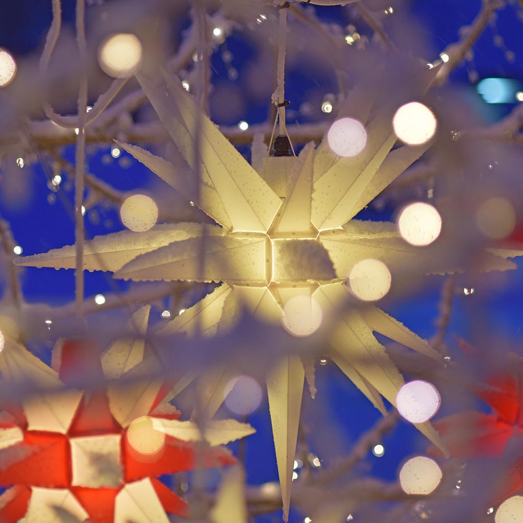 julstjärna utomhus vit image